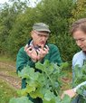 En mand og en kvinde står på en mark og ser på en kålplante.